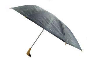 601073_umbrella_3