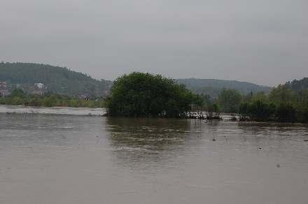 Informacja dla powodzian Inspektor Sanitarny